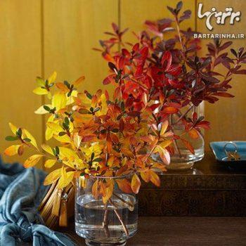 دکور پاییزی خانه با عناصر طبیعی (۱)