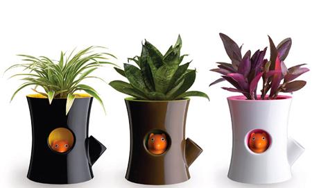 چیدمان خانه با گل های طبیعی,دکوراسیون خانه های مدرن