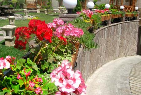 تزیین گل در حیاط,تزیین حیاط
